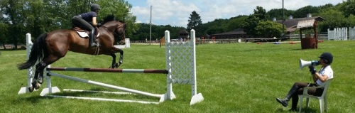 Horse training session