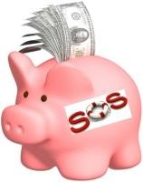 Campaign Piggy Bank