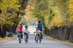 family-biking-at-millbrook