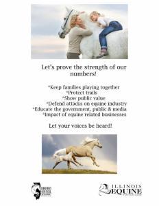 Survey Flyer 4